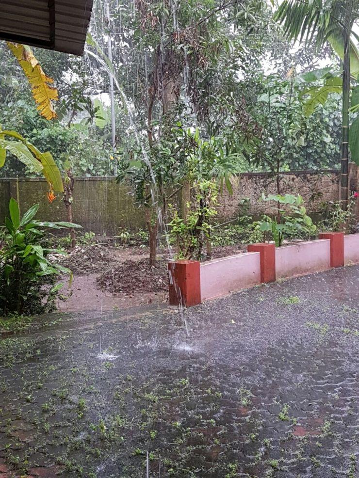 monsoon-in-kerala-india
