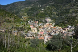 View of the village from the top