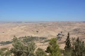 Palestine Beyond