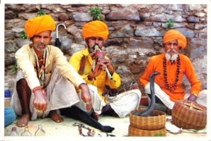 INDIA - snake charmer