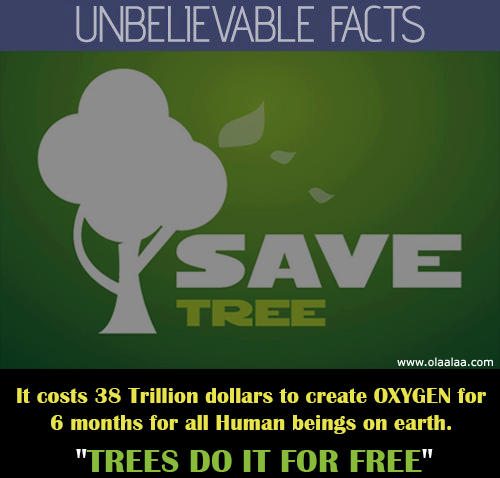 save-trees-oxygen-earth-messages-pictures-images-photos.jpg