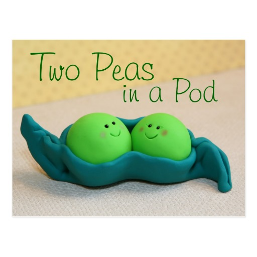 two_peas_in_a_pod_postcard-r289baf6284ee4502a78f7da49d8d629e_vgbaq_8byvr_512