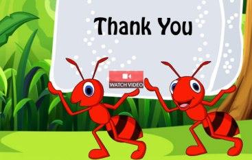 Thankyou_5