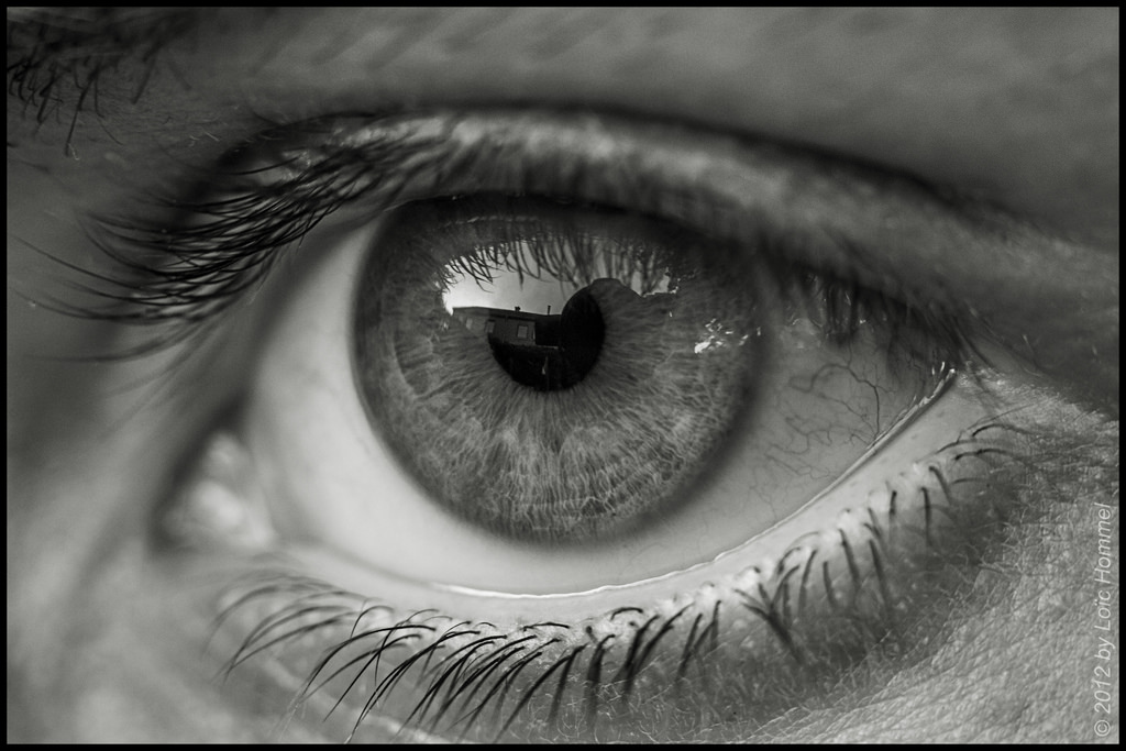 eye eyes macro poem story taken tell norwegian clip amazing napowrimo words