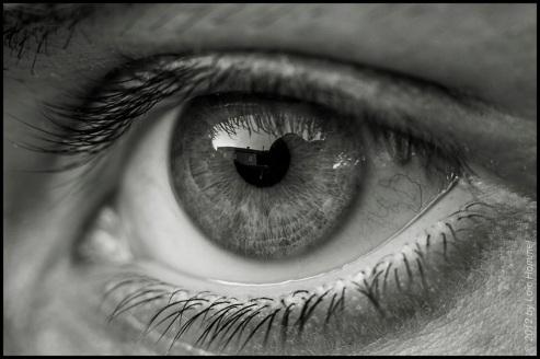 eye-black-and-white-black-and-white-macro-eye-macro-picture-taken-from-an-eye-flickr-clip-art