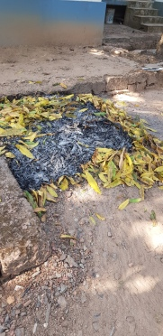 Fallen leaves swept everyday are burnt here