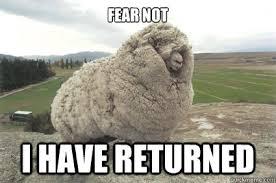 i have returned